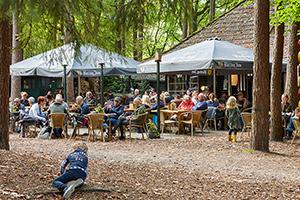 Terras in de Bossen van Feestlocatie Oisterwijk Boscafé De Rode Lelie